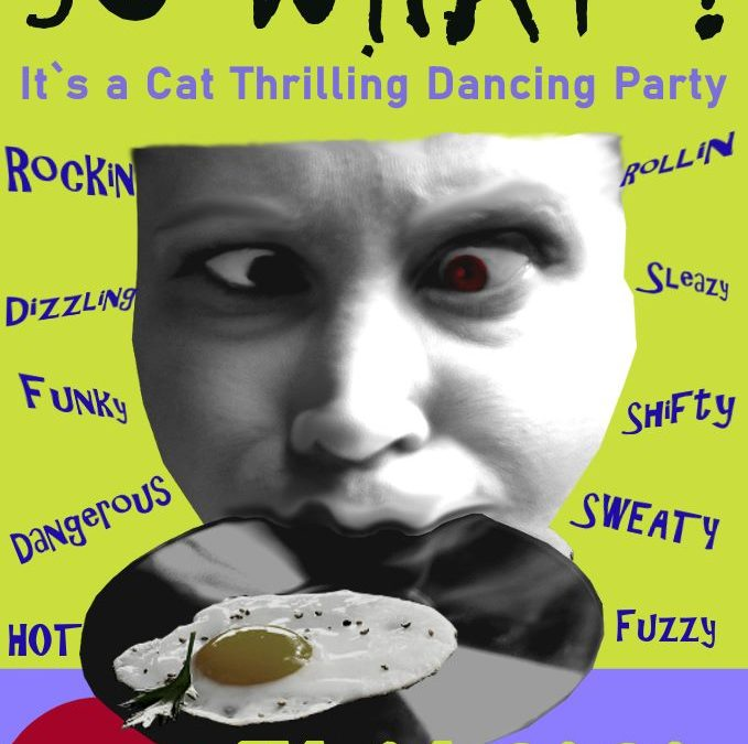 So What! Its a cat thrilling dancing party